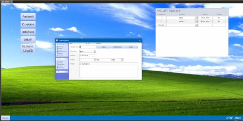 Nemocniční systém ve vzhledu Windows Xp